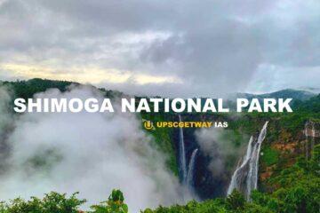 Shimoga Monkey National Park